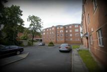 Apartment to rent in Mallard Court Foleshill