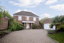 6 bedroom new property to rent in Southway, Totteridge...