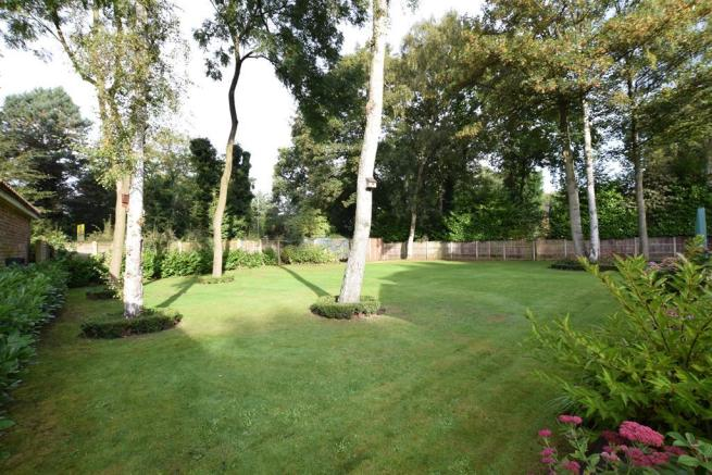 Garden Angle 2