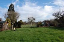 Detached Bungalow for sale in School Lane, Ufford