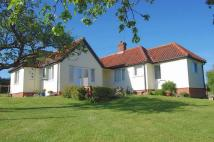 3 bedroom Detached Bungalow for sale in Badingham Road...