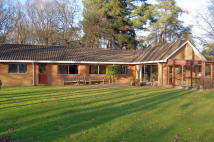 4 bed Detached Bungalow for sale in Broomheath, Woodbridge