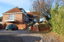 Detached property for sale in Main Road, Martlesham