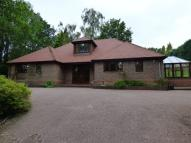 4 bed Detached Bungalow in Kingswood