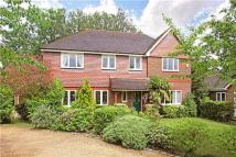 The Hawthorns Detached house for sale