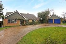 4 bed Bungalow in Curridge Green, Curridge...