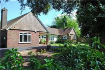 4 bed Detached home in Church Lane, Thatcham...