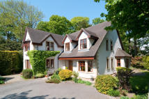 Detached house for sale in Holly  Lodge...
