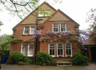 6 bed Detached home to rent in Champion Hill...