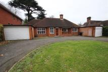 Bungalow to rent in Stanmore Hill, Stanmore