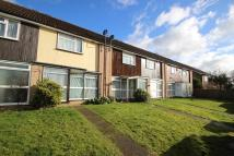 Terraced property to rent in Beech Tree Close...