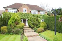 Detached house in Bushey Heath