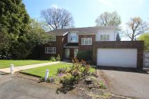 5 bedroom Detached home in Hive Close, Bushey Heath...
