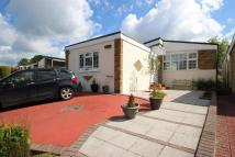 Detached Bungalow to rent in Winston Close, Harrow...