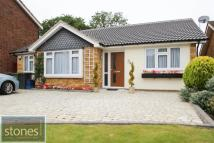 2 bedroom Detached Bungalow for sale in Magnaville Road...