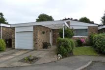Detached Bungalow to rent in Winston Close...