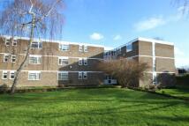 Stratton Close Flat to rent