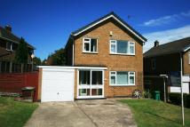3 bed Detached house to rent in Greenacre, WOLLATON...