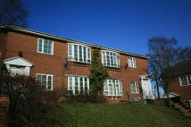 Flat to rent in Thoresby Court...