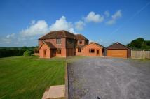 4 bed Detached house for sale in Bridewell Farm House...