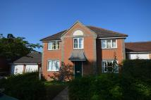 4 bed Detached house to rent in Forest Avenue, Ashford