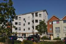 new Apartment to rent in Willesborough
