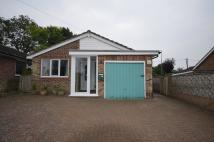 Detached Bungalow to rent in Downs Way, Sellindge