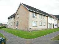 Larch Ground Flat to rent