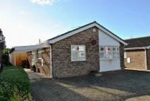 Detached Bungalow for sale in Reynard Way, Kingsthorpe...