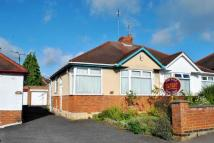 2 bed Semi-Detached Bungalow for sale in Central Avenue...
