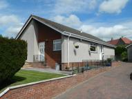 Detached Bungalow for sale in Cloglands, Forth, Lanark...