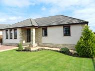 3 bed Detached Bungalow in George Paul Road...