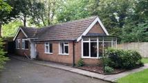3 bed Detached Bungalow in Birmingham Road, Hopwood...