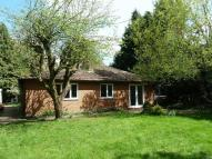 2 bed Detached Bungalow to rent in Morton hall Lane...