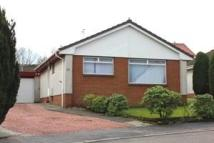 Detached Bungalow to rent in Laburnum Drive...