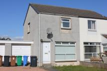 2 bed semi detached house to rent in Winram Place...