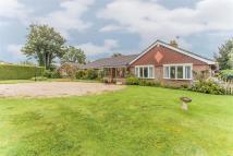 Detached Bungalow for sale in East End Lane, Ditchling...