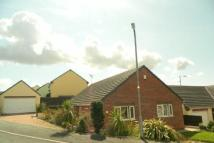 Detached Bungalow for sale in Fern Rise, Neyland...