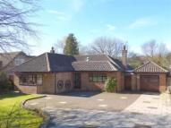 Bungalow for sale in Prescot Road, Aughton...