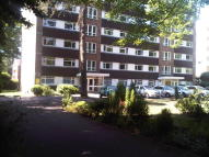 2 bed Ground Flat to rent in Lindsay Road, Branksome...