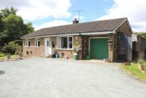 Woodville Detached Bungalow for sale