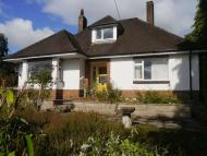 Detached Bungalow for sale in Bryndir, Westwood Park...