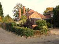 4 bedroom Detached Bungalow to rent in Beechwood Avenue...