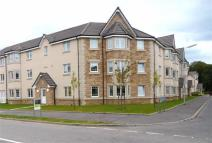 2 bed Flat in McCormack Place, Larbert