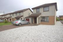 Detached property for sale in Sainford Crescent...