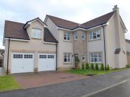 4 bed Detached home in Cambus Avenue...