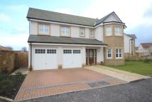 5 bedroom Detached house in Cambus Avenue, Larbert