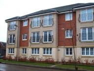 Flat to rent in Wilkie Place, Larbert...