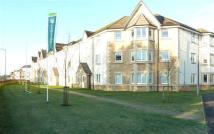 1 bed Flat to rent in Mccormack Place, Larbert