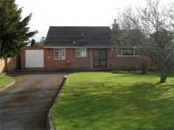 Sherwood Lane Detached Bungalow to rent